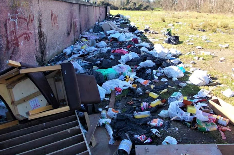 Illegal dumping in South Dublin needs to be tackled immediately